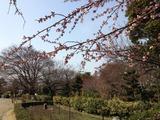 名古屋城東門