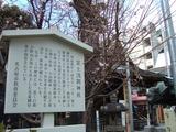 富士浅間神社2012年