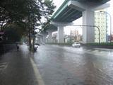 空港線・つるま図書館前2011/09/20
