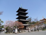 興正寺2011/04/06
