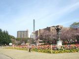 鶴舞公園20120415