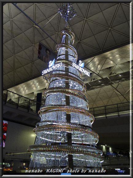 香港はクリスマス一色!!