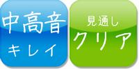icon_S-300NEO