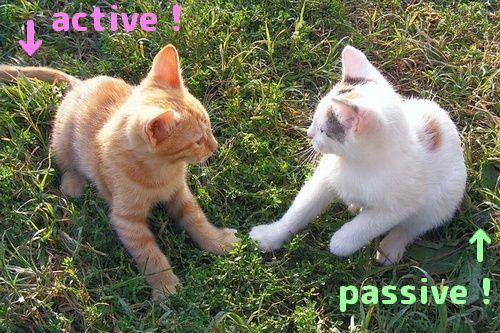 アクティブとパッシブ