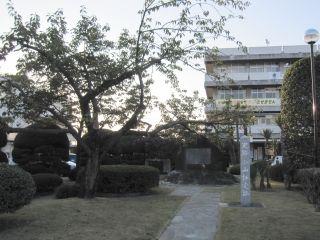 oyamahyojo
