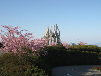 公園寒桜070304 006