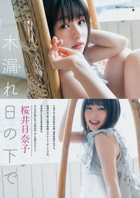 桜井日奈子 エロ (2)