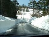 除雪された道