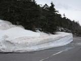 田の原の雪