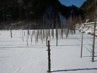 自然湖DSCN4155