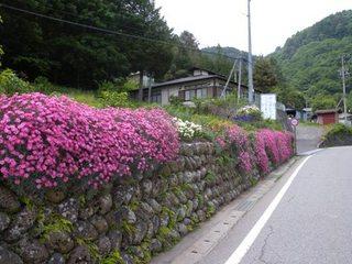 blogDSCN7464