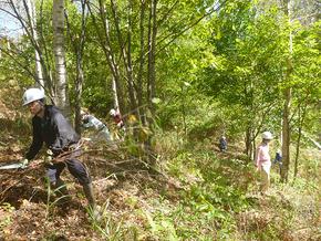 森の里親事業による森林整備...