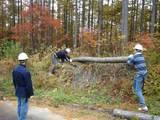 blog2009_1024アサヒ中日森林整備0053