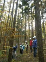 blog2009_1024アサヒ中日森林整備0001