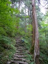blogDSCN0772(新滝への道)