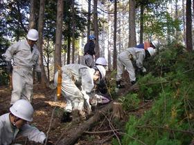 1025小牧市職員林業体験 092