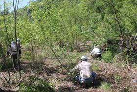 未来世紀の森育林作業�