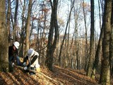 blog2008_1107ガイア林業体験0005