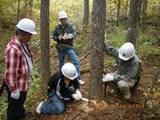 blog2009_1024アサヒ中日森林整備0011