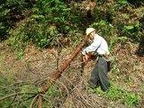 blog2008_1003緑の挑戦者0048
