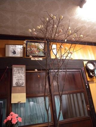 blogDSCN4107【田代家】