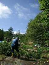 blog2008_1003緑の挑戦者0039