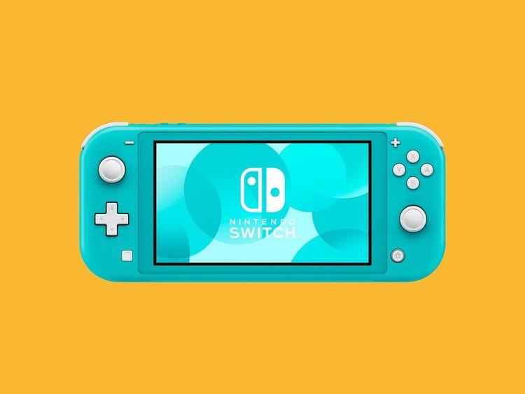 01-Gear-NintendoSwitchLite_artwork_02