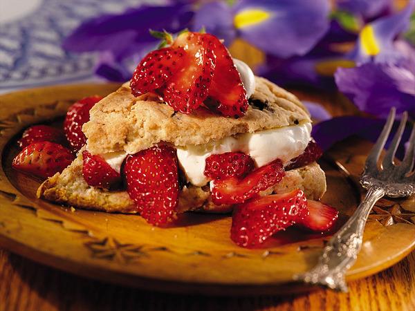 chocolate_chip_shortcake_lrg