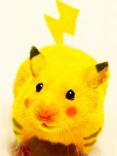 http://livedoor.blogimg.jp/otakugovernance/imgs/c/e/ce90f3fa.jpg