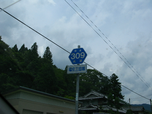 IMG_2248