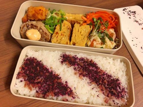 【画像あり】俺の作った今日のうまうま弁当!!!
