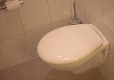 【恐怖】誰も近づかないのにトイレの自動開閉機能が作動してパカパカ→その理由が