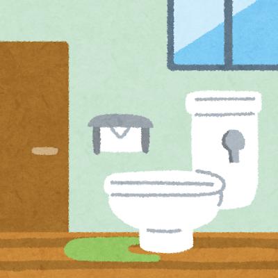 【しゅごい】頑張って100均のアイテムでトイレに高級感を出した話