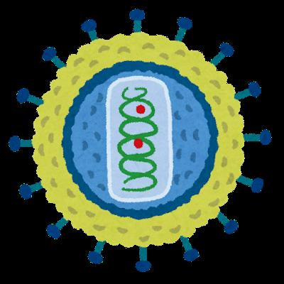 【神】神戸大がHIVの遺伝子を壊す技術を開発!!!