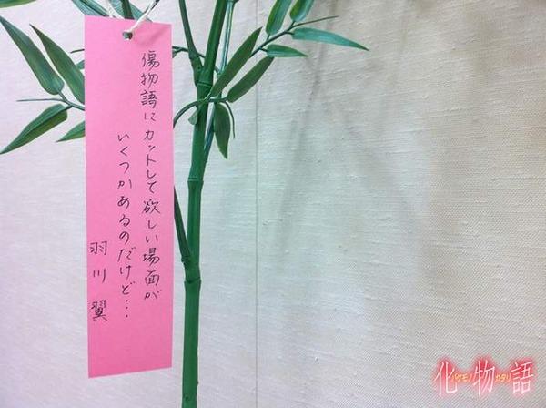 11_wish_tsubasa[1]