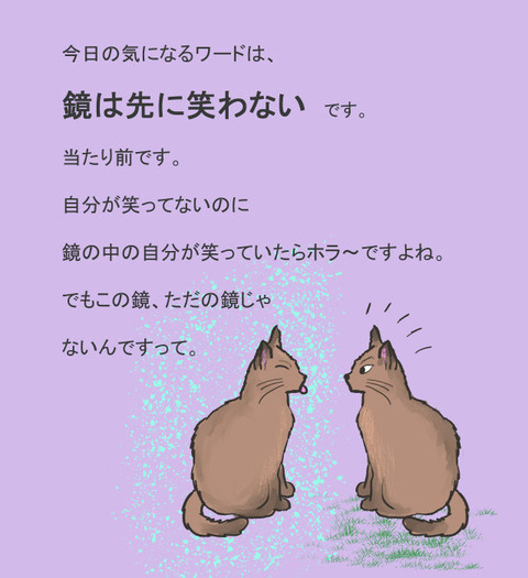 にゃんこ 5日03日