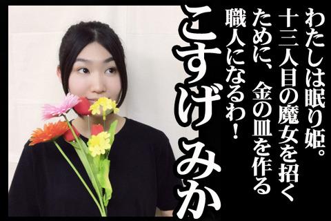 04#09紹介こすげ