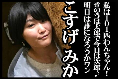 05#16紹介こすげ