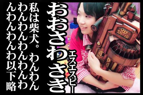 02#16紹介おおさわ