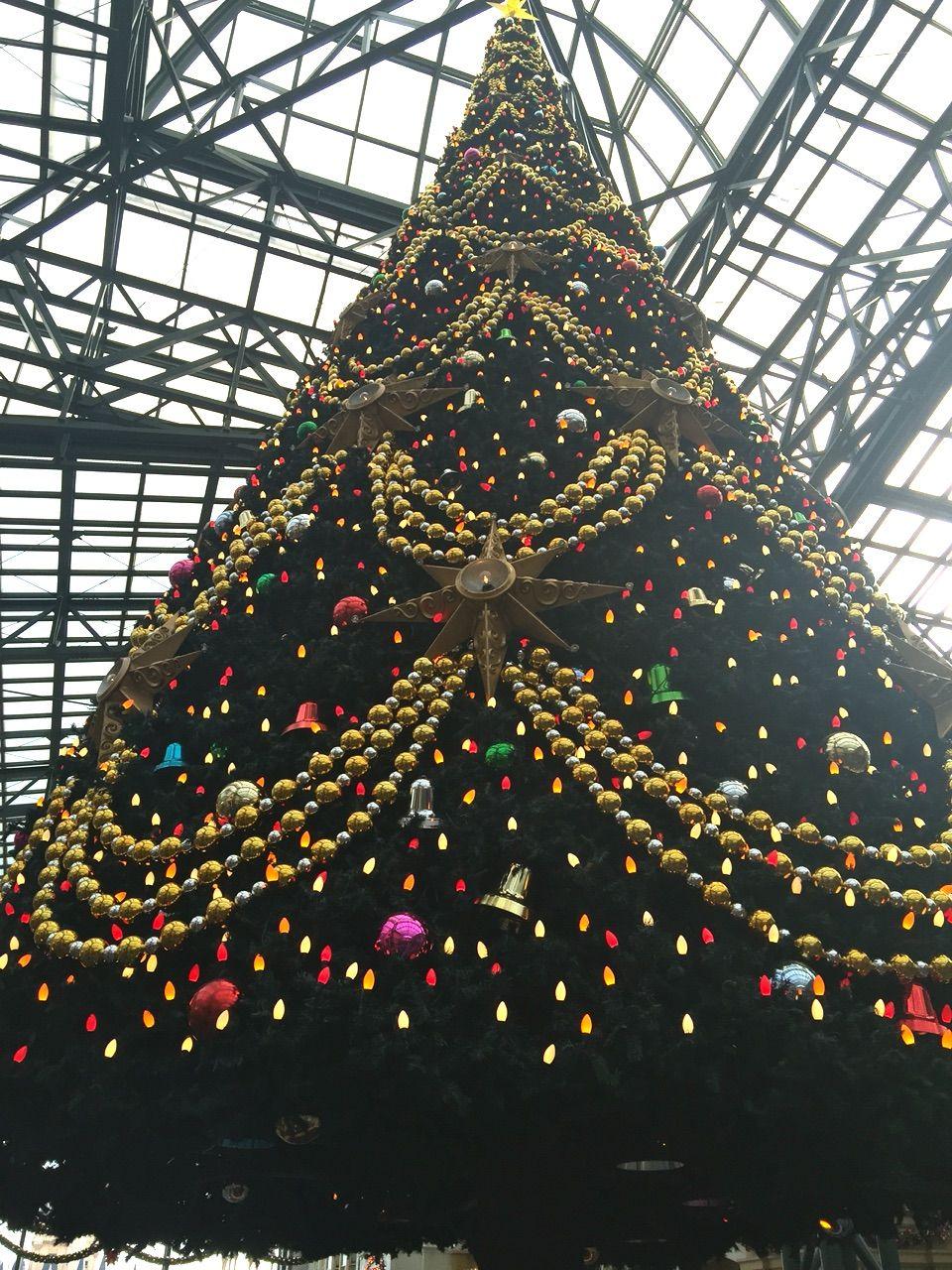 2016年11月 クリスマスディズニー 旅行記(千葉県浦安市『ミラコスタ