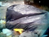 desmembrados2-266x200