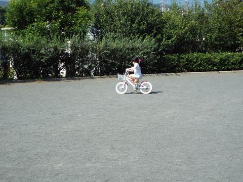 Nちゃん自転車