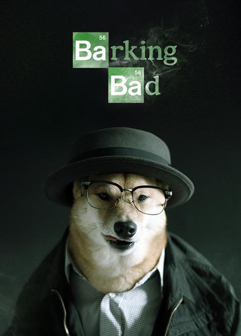 Menswear Dogの柴犬