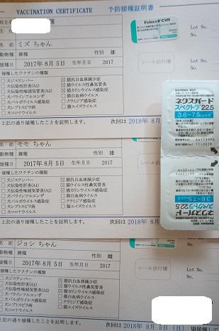 DSC01442