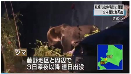 住宅街に連日出没のクマ駆除 札幌 南区   NHKニュース