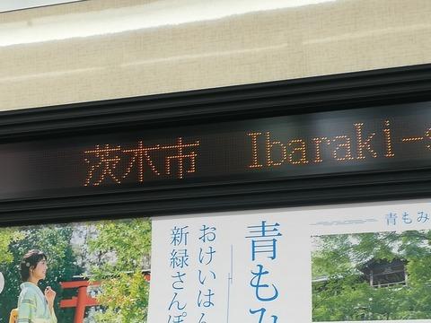 20190526学鉄連新歓_190529_0023