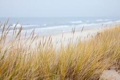 dunes-1936086_640