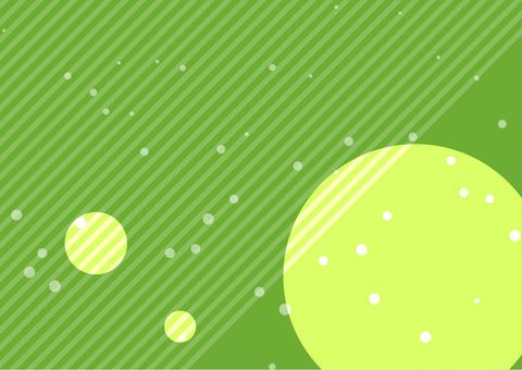SWST-0032_back_011_green