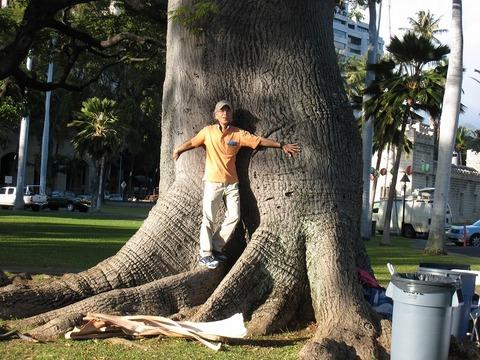 3IMG_0067宮殿の巨木