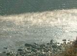 水面に霧立つ